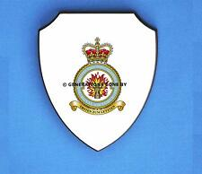 ROYAL AIR FORCE 1 FORCE PROTECTION WING WALL SHIELD (FULL COLOUR)