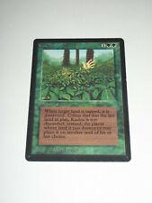 Magic the Gathering MTG Beta KUDZU Single Card NM *Possibly Unplayed*