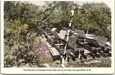 Postcard NH George Mills Hatchery Of Sunapee Lake Fish And Game Club R14