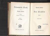 Theodor Fontane. Gesammelte Werke 1905 Erstausgabe in Halbleder