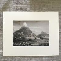 1865 Aufdruck Afrikanischer Landschaft Berg Rhino Wald Antik Original