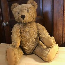 Steiff Teddy Bear Golden Mohair 18 Inches Tall 1950's Original Owner