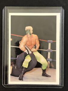 1988 Wonderama NWA Sting Rookie RC