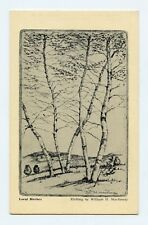Local Birches (Possibly Woodstock, NY) Etching by William H. MacReady Postcard