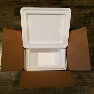 """Styrofoam Insulated Cooler with Shipping Box ext meas 15.5""""L x 13.5""""W x 12.5""""H"""