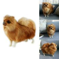 Realistic Simulation Dog Toy Plush Pomeranian Doll Stuffed Animal Kids Xmas Gift