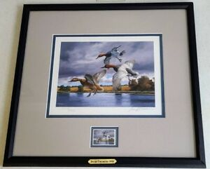 2005 David A. Maass Signed Ducks Unlimited 2578/5000 Print And Stamp Framed