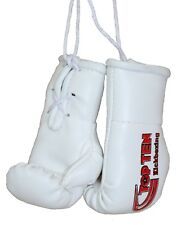 Mini boxing Gloves de top ten kickboxing. Boxeo, Muay Thai, MMA,