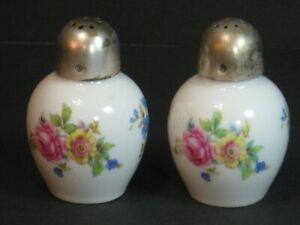 VTG THOMAS Rosenthal Porcelain Salt & Pepper Shakers Floral/Roses Germany, EUC!
