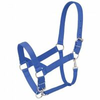 Tough 1 Blue Standard Nylon Draft Sized Halter horse tack 50-9550