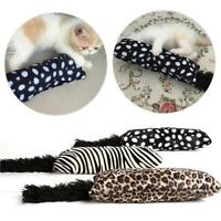 New Cat Pillow Interactive Fancy Catnip Pets Teeth Grinding Claws Pet Funny Toys