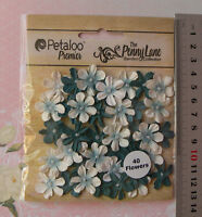 Mini Daisy Petite TEAL Mix - 40 Paper 20-22mm Pearl Centre Penny Lane Petaloo
