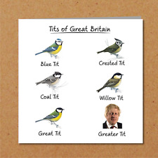 Funny Boris Johnson Birthday Card humorous amusing sucks BoJo Brexit rude