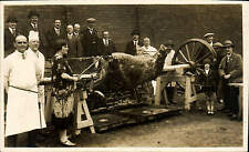 More details for brierley hill carnival. ox roast by nova studios, (over woolworth's) stourbridge