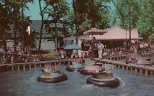 The Water Bug at Riverview Park Chicago IL Postcard Amusement Park
