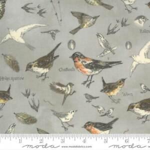 Botanicals 16910-12 Moda Fabrics Birds In Nature Vintage Grey Janet Clare
