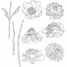 Tim Holtz Rubber Stamp Set-Flower Garden CMS 215