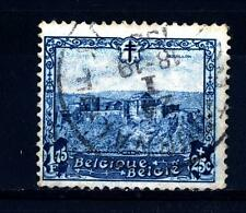 BELGIUM - BELGIO - 1930 - Lotta contro la tubercolosi: Castelli