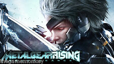 METAL GEAR RISING REVENGEANCE [PC/Mac] STEAM key