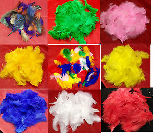 Bag of Coloured Feathers for Crafts, Turkey & Guinea Fowl, Red, Orange, Green