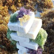 Super Sea Moss Soap with Jamaican Purple Sea Moss, Gold Sea Moss and Spirulina