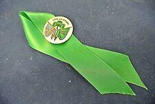 Erin Go Bragh Pinback On Green Ribbon