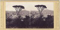Napoli Italia Ferd Finsterlin München Stereo Vintage Albumina Ca 1865