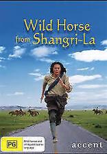 WILD HORSE DVD - Drama, Chinese Tibet, SHANGRI LA - Ex Rental Eng Subs