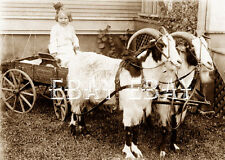 PHOTO OF LITTLE GIRL IN HER JOHN DEERE TRACTOR COMPANY CO GOAT CART WAGON