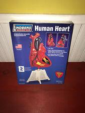 Lindberg Science Kits Human Heart Model Kit NIB!!