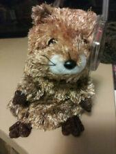TY Punxsutawn-e Phil Groundhog Beanie Baby  02-02-02 Punxsutawney Retired 2003