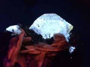 KB: SW FL BRIGHT BLUE & YELLOW SCHEELITE XL. W/ RED CALCITE FROM INNER MONGOLIA