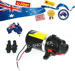 12 Volt High Pressure Spray Horse Boat or Weed Spray chemical Seal Pump 160 PSI