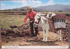 Irish Postcard PEAT-CUTTING IN IRELAND Slane Man Sheep on Donkey Basket Bamforth