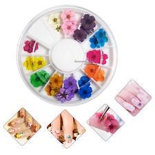 5 Pcs 3D Dry Flower 12 Colors Nail Art Decoration for Diy Uv Gel Acrylic beauty