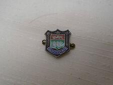 Antique Lapel Pin Enamel Details SASKATCHEWAN Canada Prairie Province Souvenir