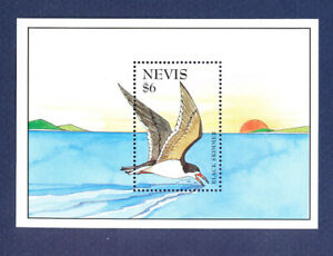 NEVIS - Scott 901 -  FVF MNH S/S - bird - 1995