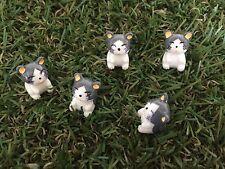 5 Pcs Miniature chats jardin ornement Figurine fée Dollhouse Decor