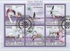 Timbres Oiseaux Comores 1711/5 o année 2009 lot 18964 - cote : 16 €