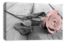 Le Reve Floral Rose Wall Art Pink White Grey Canvas Flowers Picture Panel Set A