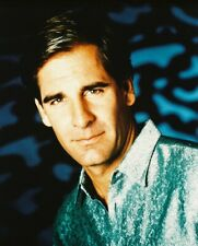Scott Bakula Quantum Leap Color 8X10 Photo Print