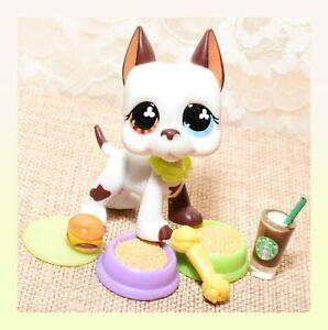 ❤️Authentic Littlest Pet Shop LPS #577 Great Dane Dog Tom Dawson Clover Eyes❤️