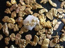 2 lb  Montana gold nugget panning paydirt mining sluice