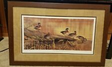 Resting Place - Wood Ducks Painting By Scot Storm Limited Edition Print Signed