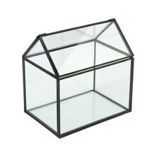 Modern Glass Geometric Terrarium Box Flowers Herb Moss Planter Greenhouse #5