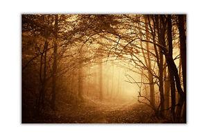 Dark Misty Forest Landscape Wall Prints Poster Art Home Decoration Pictures