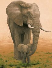 VINTAGE AFRICAN ELEPHANT BABY CUB SAFARI ENDANGERED ANIMAL CANVAS ART PRINT BIG