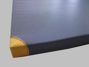 Turnmatte, Turnmatten, Leichtturnmatte, 200x100x8 cm m. Lederecken  BLAU*