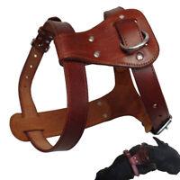 Handcraft Genuine Leather Pet Dog Harness Vest for Small Large Dogs Adjustable
