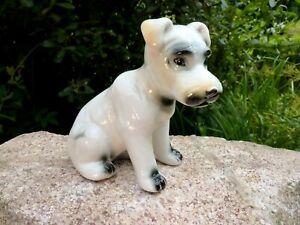 wunderschöne alte Porzellanfigur Terrier Hund weiß 13 cm Sammlerstück